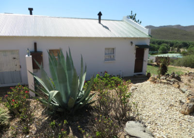 Cottage 4 - Backyard